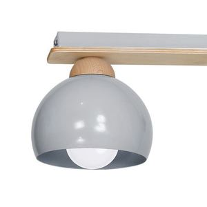 Gray Ceiling Lamp Dama Gray 3x E27 small 4