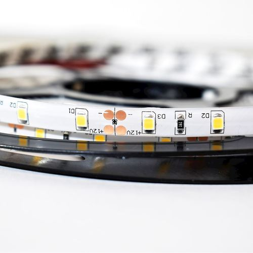Pro 60 Led strip 24 W 6000 K Ip65 5m IP65