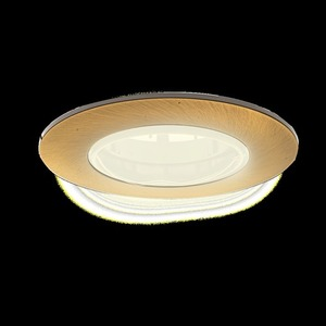 Brass Eyelet Ceiling Adjustable Cast Motion small 7