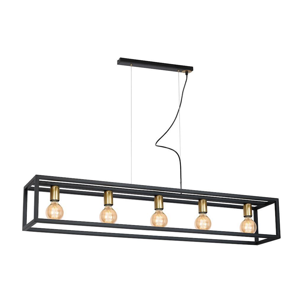 Black Hanging Lamp Cage 5x E27