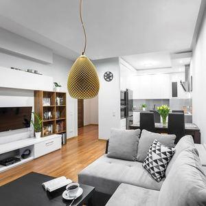 Fiji Gold Hanging Lamp 1x E27 small 5
