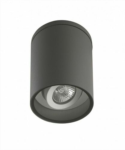 Ceiling luminaire with adjustable angle of inclination of the light source Adela 7004 DG