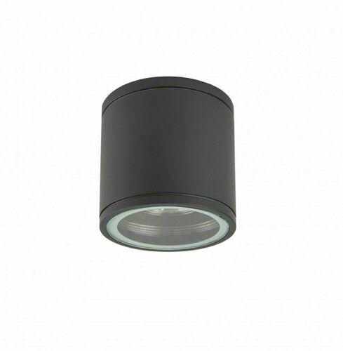 Ceiling fitting / outdoor plafond Adela Midi M1455 DG