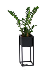 Metal flower stand for plants CUBO 50cm black loft box small 0