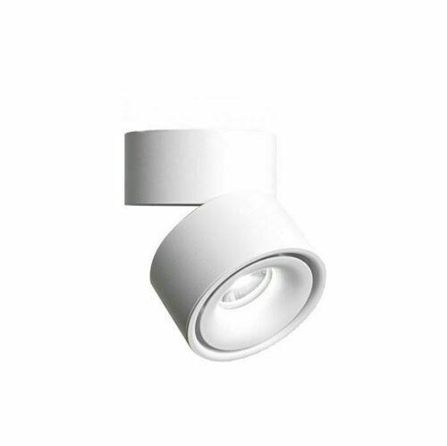 Abigali Ra90 20 ° 12W WW dimmable luminaire