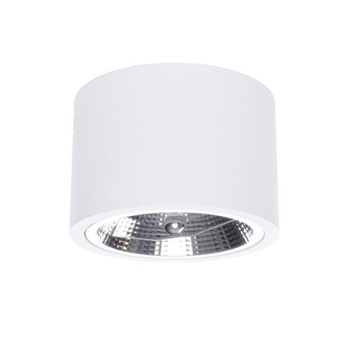 Camino white surface mounted luminaire