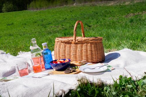 Closed wicker picnic / shopping basket - eco - handmade