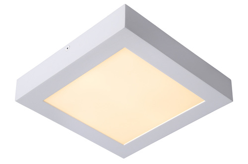 White LED Panel Plafon Brice 22W