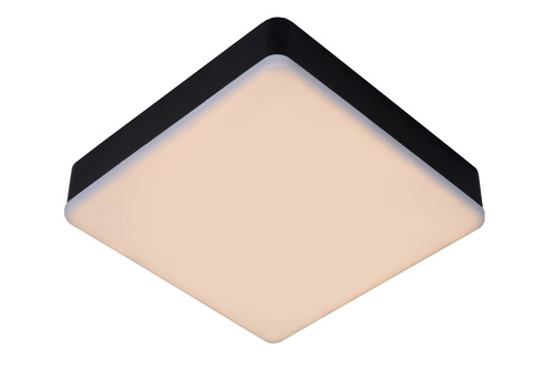 Ceiling CERES-LED black / white 28113/30/30