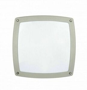 Nex silver outdoor ceiling lamp small 2