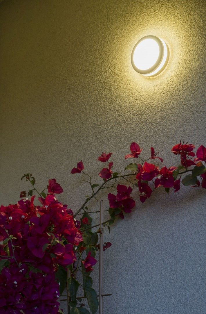 TULA M7067 outdoor wall lamp
