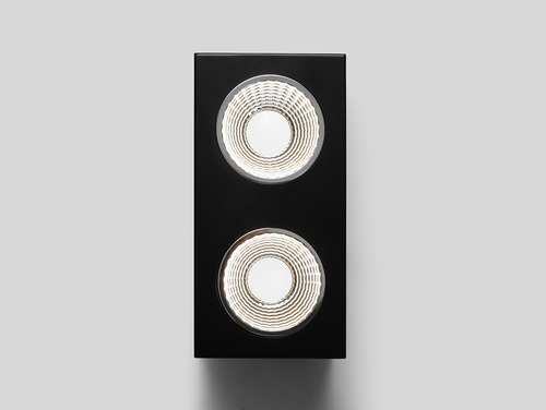 Oprawa sufitowa FLASS 2 LED - czarny