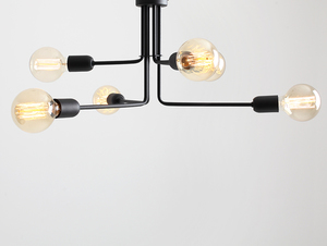 VANWERK 29 hanging lamp - black small 0