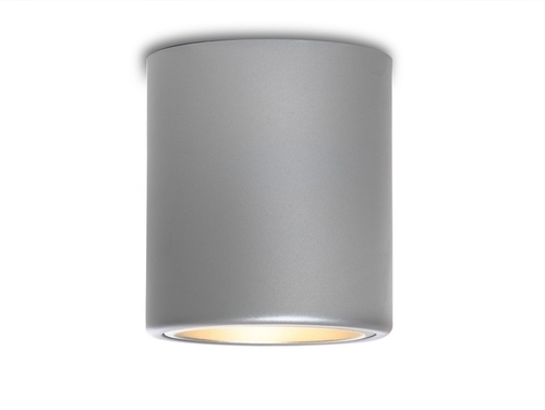 DOWNSPOT SILVER M 19 ceiling lamp - silver