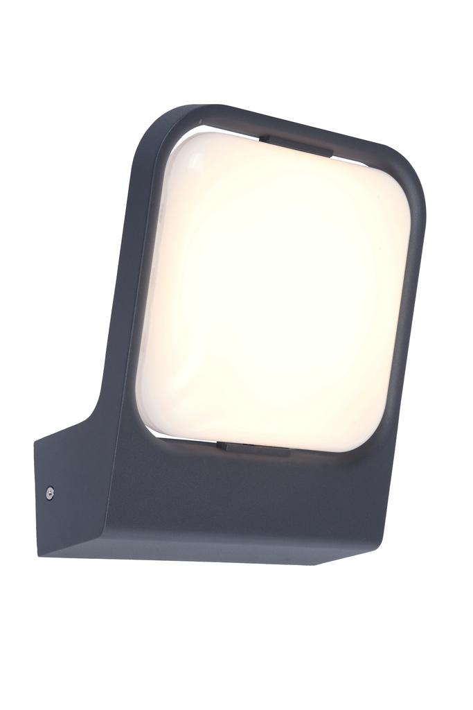 Lutec FACCIA anthracite outdoor wall lamp