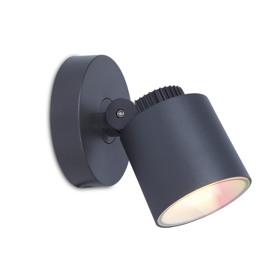 Outdoor wall lamp Lutec EXPLORER 430lm