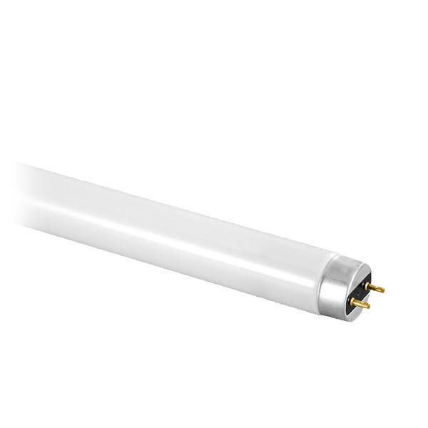 Fluorescent F15 T8 18W 4000K