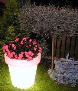 Illuminated flowerpot Bordato Liscio small 3