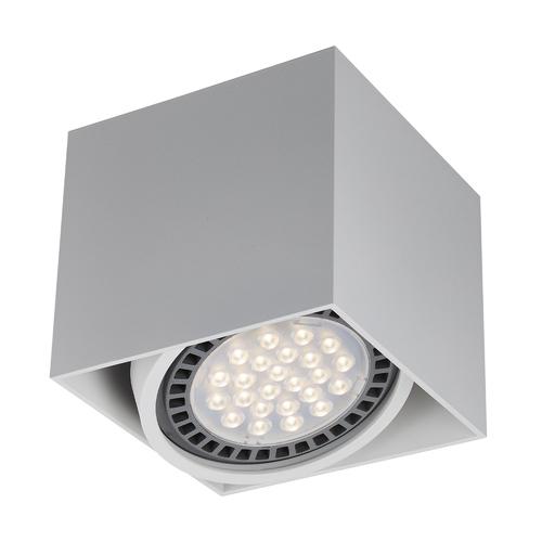 ACGU10-114 BOX1 PLAFON WHITE / WHITE
