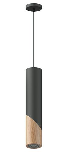 Hanging SVEG 60 Thoro lamp