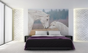 Wall mural horses, Shetland pony, white horse, wall wallpaper small 1