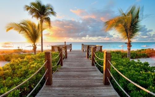 Wall mural beach, palm trees, wooden bridge, sunset