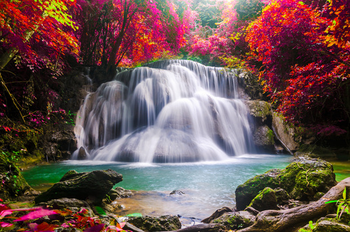 Wall mural waterfall, landscape, red tree leaves, rocks