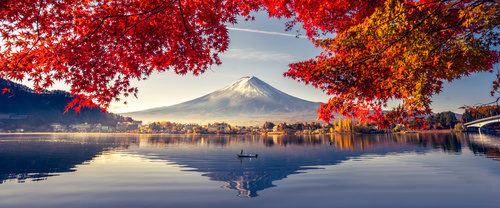 Wall mural with a view of the Fuji volcano, lake and trees, contrast of warm and cold colors