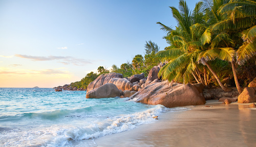 Wall mural beach, sunset over the sea, waves, rocky shore, coconut palm trees