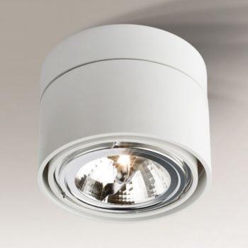 Surface mounted adjustable luminaire Shilo HIMI 1121-G53