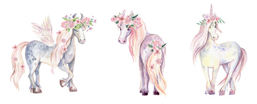 Wall mural Unicorn, Pegasus and Pony, watercolor, flowers, for girls