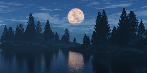 Wall mural for the bedroom moon, forest, cloudy sky, reflection in a water surface