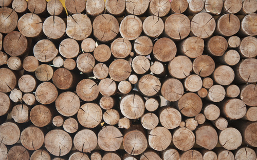 Kitchen wallpaper - wood beams, natural colors, Scandinavian style