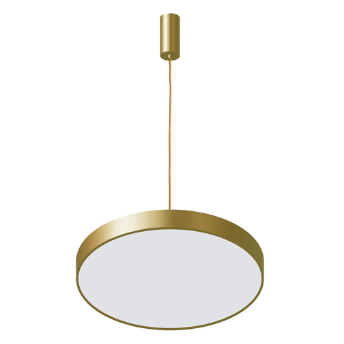 Golden Orbital LED Pendant Lamp