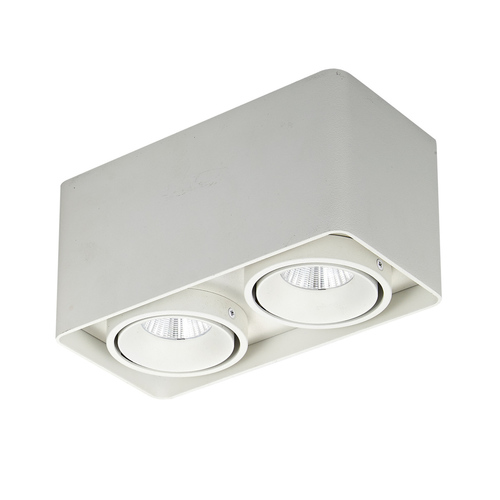 Modern Bonnie LED Surface Lamp