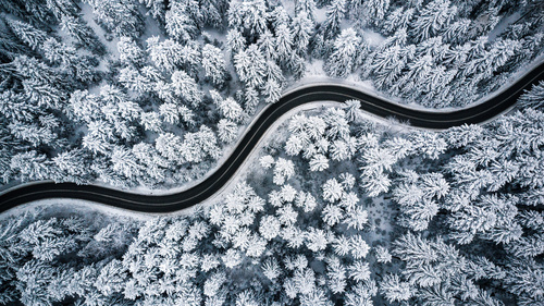 Winter forest wallpaper, trees, snow, road through the forest, aerial view